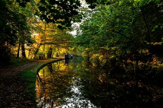 Canal dawn