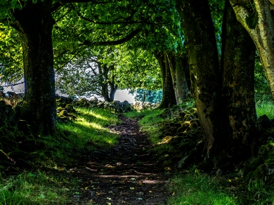Selattyn Hill