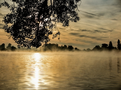 Colemere Morning